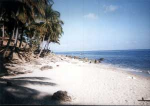Beach 1 at Sans Souci