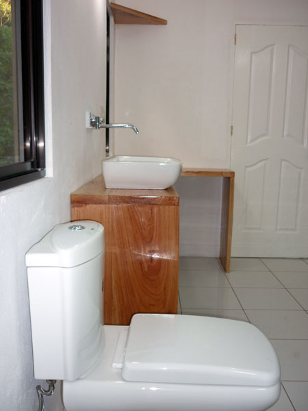 toilet and sink side view