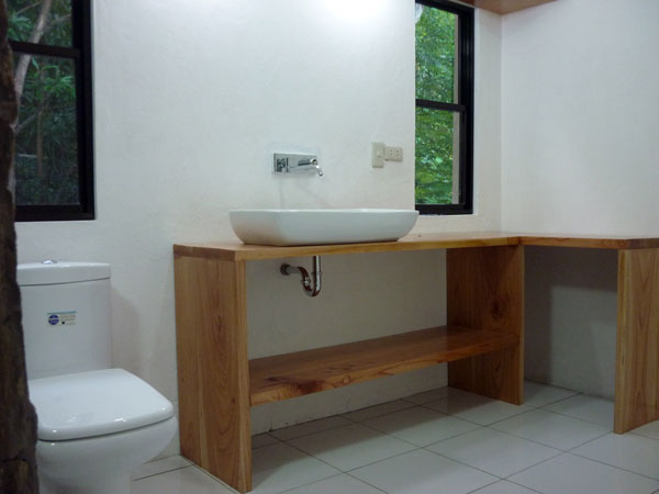 sink and toilet with counter